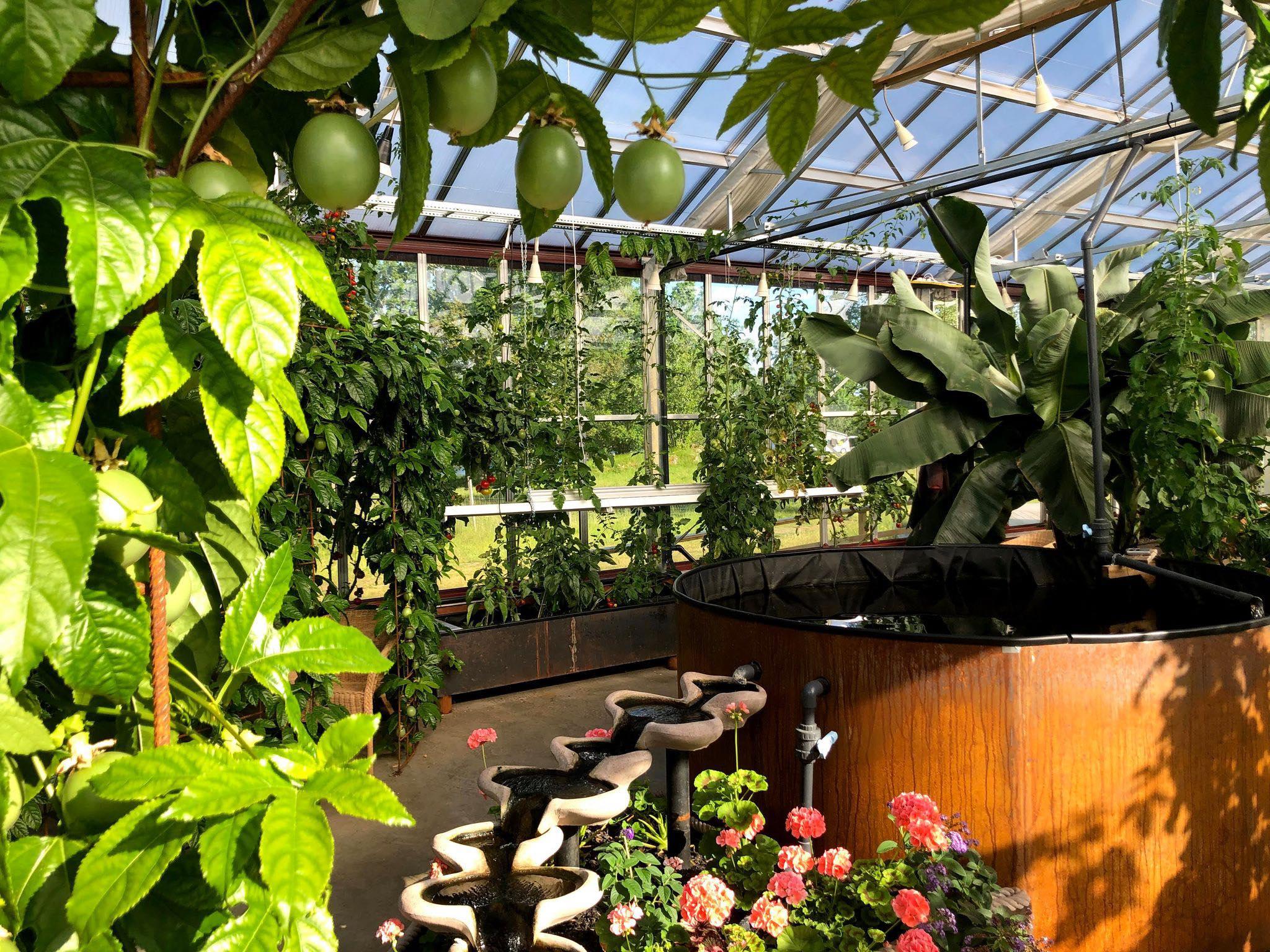 eco development program sustainable tourism sweden